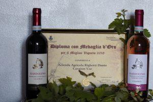 Medaglia d'Oro miglior Vigneto Bardolino